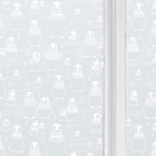 Waddle of penguins window film
